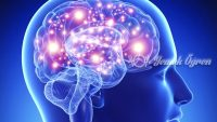 Demir eksikliği beyin gelişimini etkiliyor