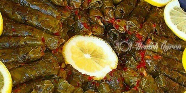 Zeytinyağlı Yaprak Sarması