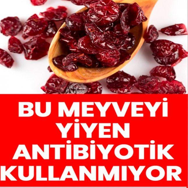 Bu meyveyi yiyen antibiyotik kullanmıyor